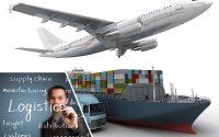 vị trí công việc ngành xnk logistics -ava