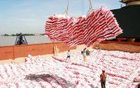 thủ tục xuất khẩu gạo