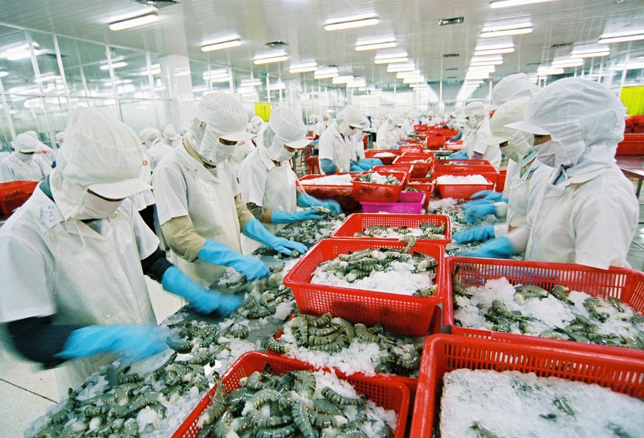 thủ tục nhập khẩu thủy sản
