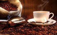 thủ tục xuất khẩu cà phê